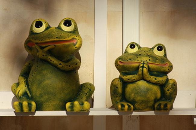 Frosch Papa und Sohn