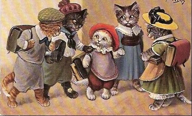 Cats écoliers