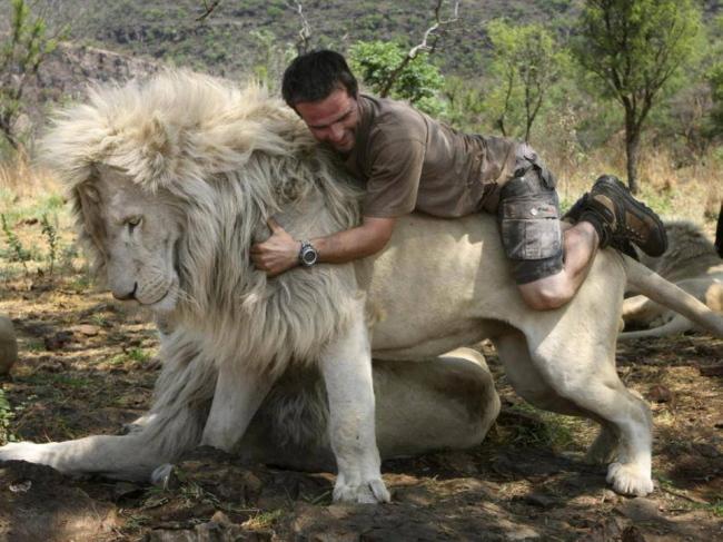 Homme et lion